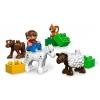 Lego-5646