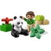 LEGO 6173 - LEGO DUPLO - Panda