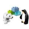 LEGO 10501 - LEGO DUPLO - Zoo Friends
