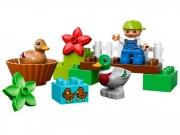 LEGO 10581 - LEGO DUPLO - Forest: Ducks