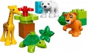 LEGO 10801 - LEGO DUPLO - Baby Animals