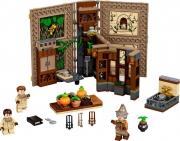 LEGO 76384 - LEGO HARRY POTTER - Hogwarts™ Moment: Herbology Class
